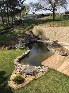 Quelques astuces pour l'aménagement d'un bassin + exemples de réalisation